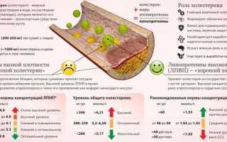 Таблица норм холестерина у мужчин по возрасту – показатели допустимых концентраций ЛПНП