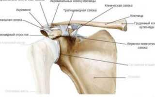 Артроз грудино-ключичного сочленения – причины, симптоматика, методы диагностики и лечения