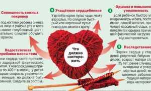 Расшифровка результатов УЗИ сердца — показатели здорового сердца у детей и взрослых