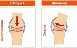 Уколы в коленный сустав при артрозе гиалуроновой кислотой – препараты, состав