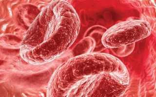 Фрукты, повышающие гемоглобин – нормы и причины отклонений