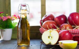 Яблочный уксус при подагре – показания, противопоказания и правила приема