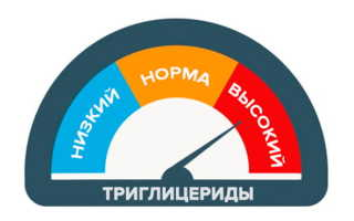 Триглицериды повышены — факторы риска и способы нормализации показателей