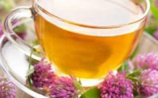 Клевер луговой от холестерина – полезные свойства и рецепты его использования