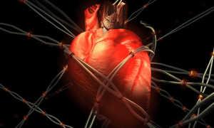 Автоматизм сердца — ускорение и замедление частоты сердечных сокращений