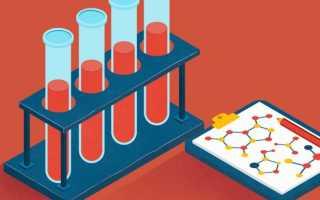 Какие бывают анализы крови – насколько важна кровь для человеческого организма?