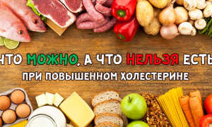 Продукты, снижающие холестерин: норма холестерина в крови, запрещенные продукты