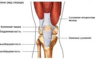 Подвывих коленного сустава – признаки травмы, оказание первой помощи